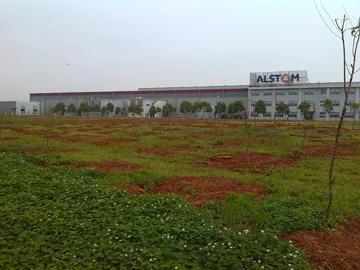 武汉阿尔斯通货场(植树绿化、球场建设)